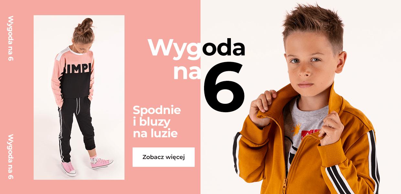 banner_Wygoda-na-6-PL